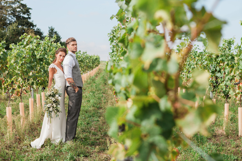 Vineyard wedding Norfolk